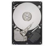 Seagate Barracuda 7200.12 250GB (ST3250312AS)
