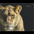 Коврик для мыши Defender Wild Animals ассорти - 8 видов(50803)