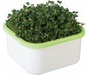 Проращиватель Здоровья КЛАД для микрозелени