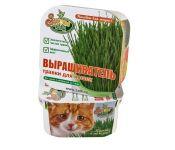 Проращиватель Здоровья КЛАД травки для кошек