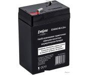 Аккумулятор для ИБП ExeGate Power EXG 645 (6В/4.5 А·ч) [EP234535RUS]