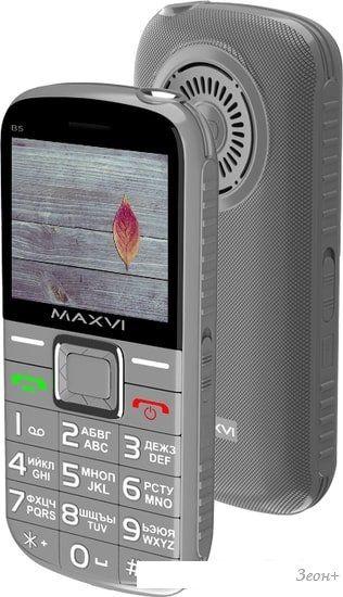 Мобильный телефон Maxvi B5 (серый)
