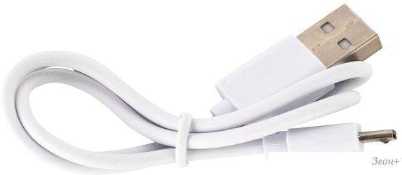 Портативное зарядное устройство iconBIT FTB10000SL (белый)
