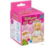 Набор для опытов Bondibon Науки с Буки Штампы для печенья ВВ3748