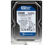 Жесткий диск WD Caviar Blue 250GB (WD2500AAKX) Восстанновленный