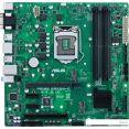 Материнская плата ASUS Prime B365M-C/CSM