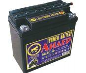 Мотоциклетный аккумулятор Tyumen Battery Лидер 3МТС-10 (10 А·ч)