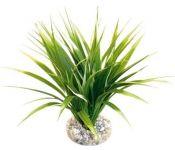 Искусственное растение Rosewood Пестрый оазис 15656/RW
