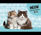 Альбом для рисования А5 24л. Два пушистых котика