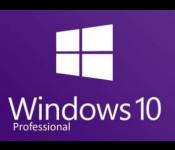 Программное обеспечение Windows 10 PRO 32/64 bit OEM (лицензия)