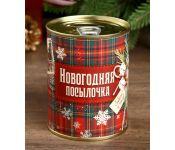 Копилка СИМА-ЛЕНД Новогодняя посылочка  4479945